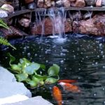 How to Build a Backyard Pond for Koi and Goldfish - Design & Excavation