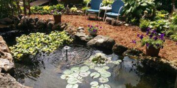 pond creator example